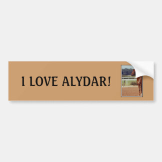 Alydar Belmont Stakes Post Parade 1978 Car Bumper Sticker