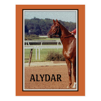 Alydar Belmont Stakes Post Parade 1978 Postcard