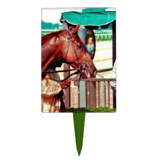 Alydar Thoroughbred Racehorse 1979 Cake Topper