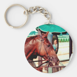 Alydar Thoroughbred Racehorse 1979 Key Chain
