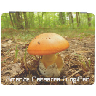 Amanita Caesarea FungiPad Cover iPad Cover