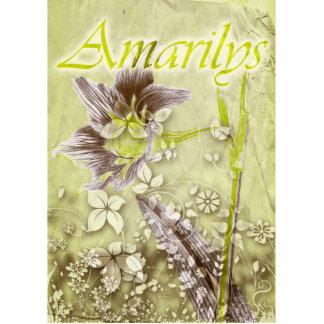 Amarilys Photo Cutout