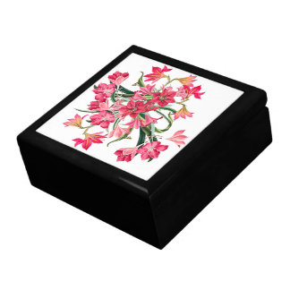 Amarylis Flowers Floral Butterfly Gift Box