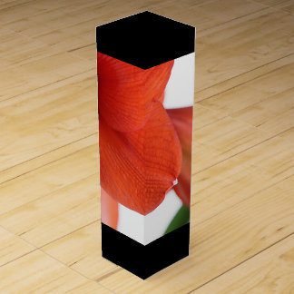 Amaryllis Blossom on Wine Box