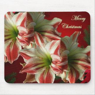 Amaryllis Christmas Mousepad