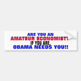 AMATEUR ECONOMIST??  IF SO, ..OBAMA NEEDS YOU! BUMPER STICKER