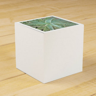 Amazing Aloe Vera Favour Box