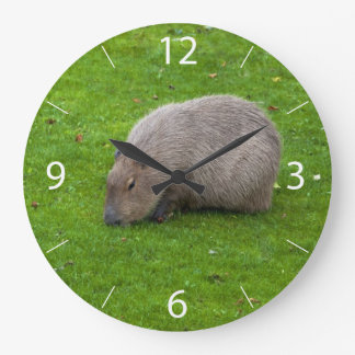 Amazing Animal Capybara Large Clock