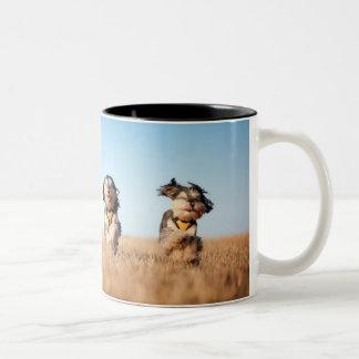 amazing animal laugh...... Two-Tone coffee mug