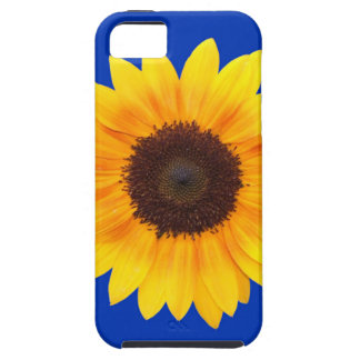 Amazing Autumn Beauty Sunflower iPhone 5 Cover