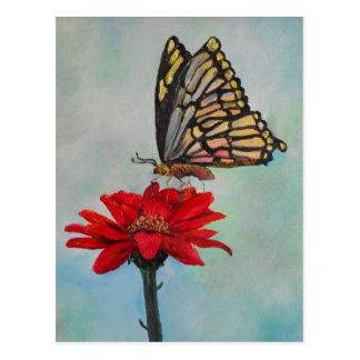 Amazing Butterfly Art! Postcards