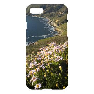 Amazing Cape Town 12 Apostles Scenery  IPhone Case