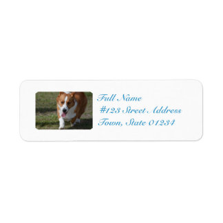 Amazing Corgi Return Address Label