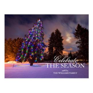 Amazing dusk light and Colored Christmas tree Postcard