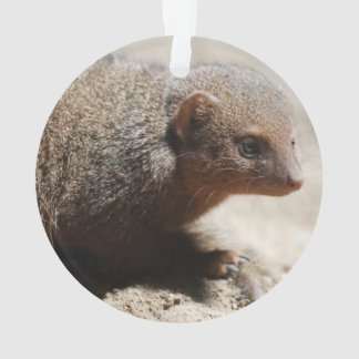 Amazing Dwarf Mongoose Ornament
