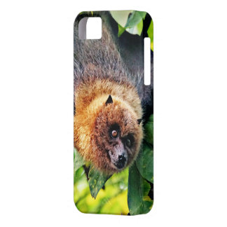 amazing Flight dog - bat iPhone 5 Cover