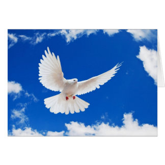 Amazing Grace with Dove of Peace and God Card