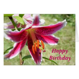 Amazing Lily Birthday Card