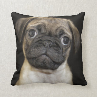 Amazing Little Pug Puppy Throw Pillow