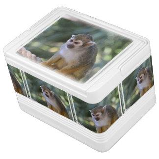 Amazing Squirrel Monkey Cooler