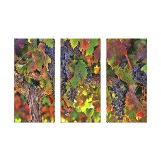 Amazing Wine Country Winery Vineyard Wall Art
