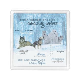 Amazing Wolves Typography   Personalized Acrylic Tray