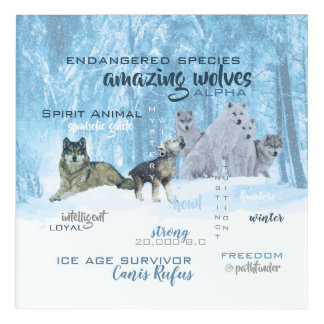 Amazing Wolves Typography   Personalized Acrylic Wall Art