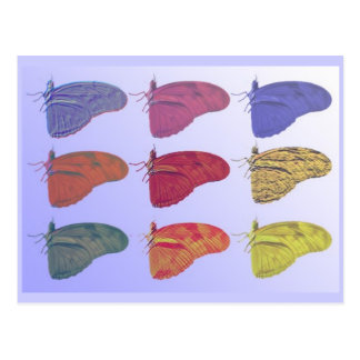 Amazon Butterfly Postcard
