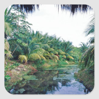 Amazon Jungle River Landscape Square Sticker