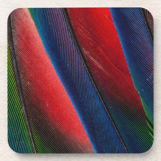 Amazon parrot feather design coaster
