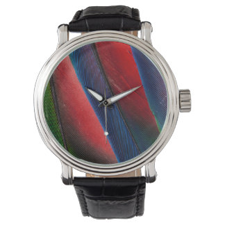Amazon parrot feather design watch