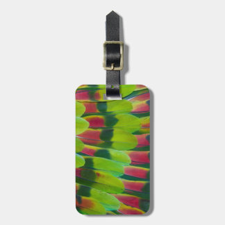 Amazon Parrot Green Feather Design Luggage Tag