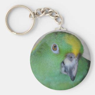Amazon Parrot Keychain
