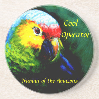 Amazon,parrot,tropical,beach,island Coaster