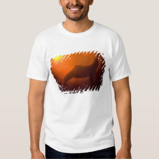 Amazon River Dolphins or Botos (Inia T-shirts