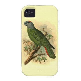 Amazona Martinicana Case-Mate Vibe iPhone 4 Case