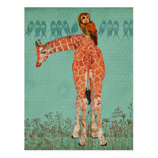 Amber Giraffe & Owl Feathers Postcard