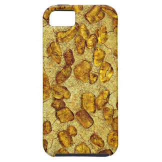 Amber inclusions | iPhone 5 covers