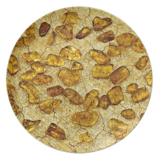 Amber inclusions | plate