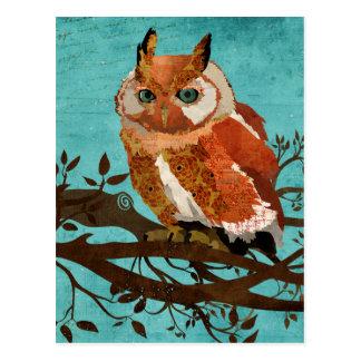 Amber Owl Blue Postcard