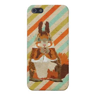 Amber Squirrel Stripes iPhone Case iPhone 5 Case