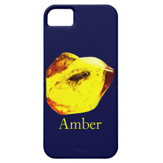 Amber stone case for the iPhone 5