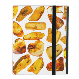 Amber stone inclusions iPad cover