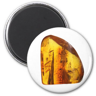 Amber stone magnet