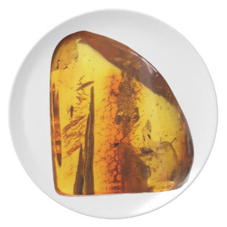 Amber stone plate