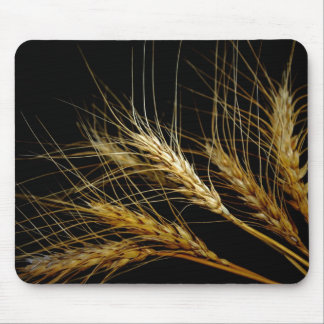 Amber Waves of Grain Wheat Mouse Pad