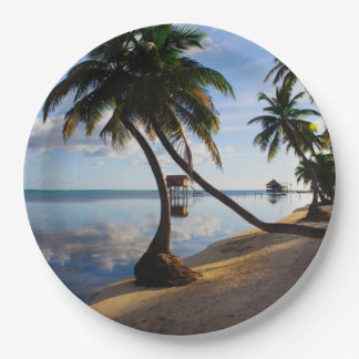 Ambergris Caye Belize 9 Inch Paper Plate