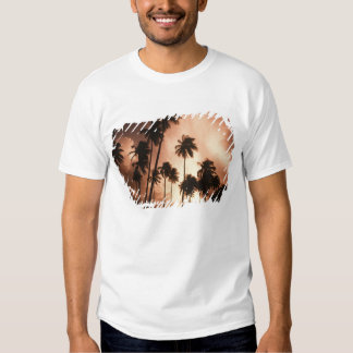 Ambergris Caye, Belize, Central America. 2 Shirt