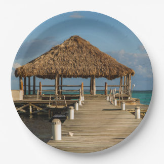 Ambergris Caye Belize Paper Plate