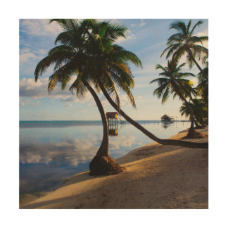 Ambergris Caye Belize Wood Wall Decor